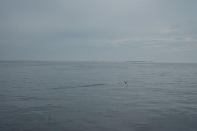 In barca verso il faro di Skomvær